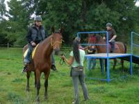 Krmení pro koně na hiporehabilitaci